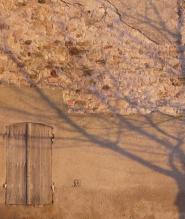edc mur ombre arbre 900